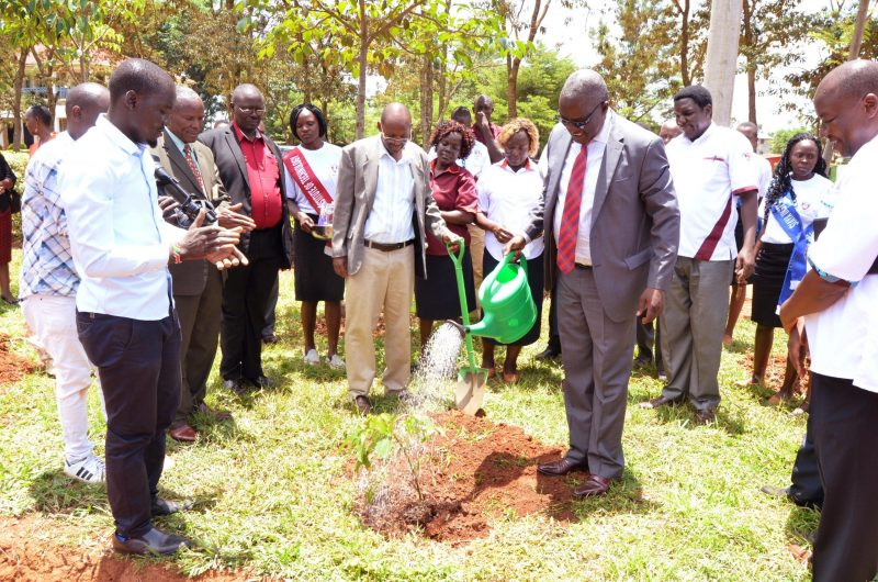 Tree Planting on Careers Day